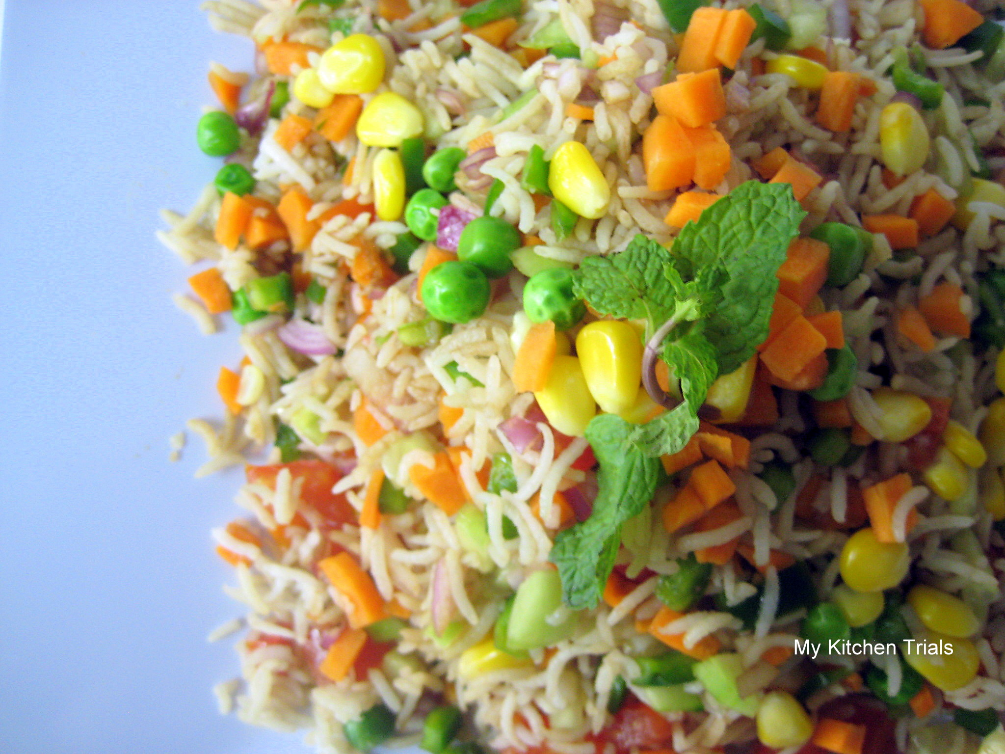 Basmati Rice And Summer Vegetable Salad Recipes — Dishmaps