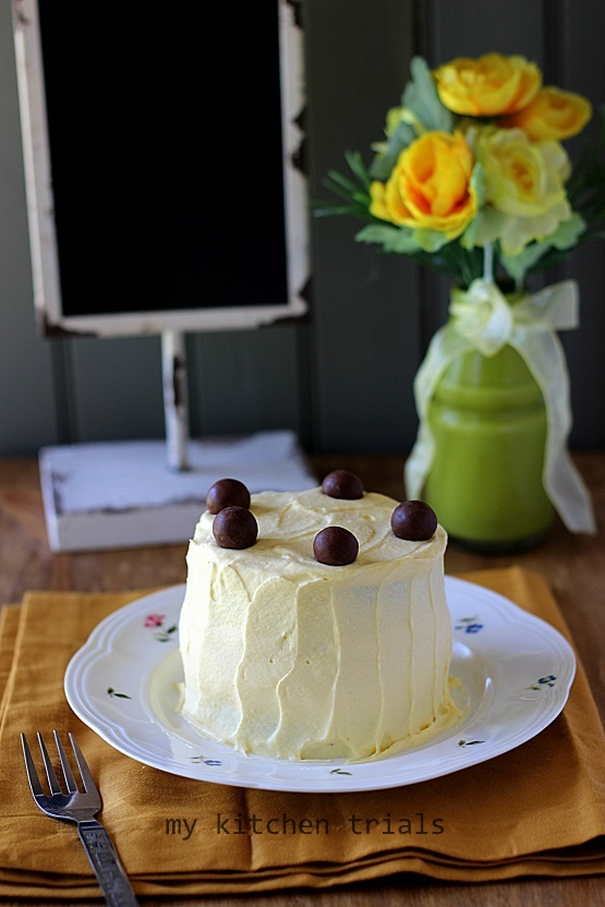1ice cream cake