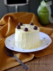 2ice cream cake