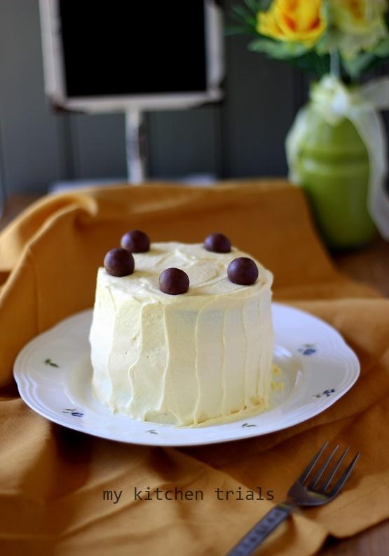 3ice cream cake
